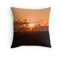 Flocking Gulls (2) Throw Pillow