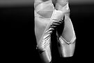 Pointe by Renee Hubbard Fine Art Photography