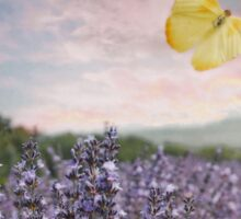 Lavender, Pink Sunset, and Yellow Butterfly Sticker