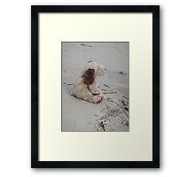 """""""Boris on the Beach"""" Framed Print"""