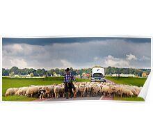 Somewhere in polder Poster