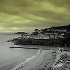 Looe, Cornwall, England by Nigel Butfield