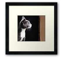 Miss M.  Framed Print