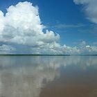 Amazonas by Ameng Gu