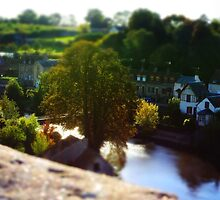 Tilt-shift panorama of Fresnay-sur-Sarthe by arc1