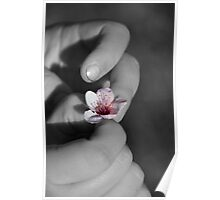 Spring at your fingertips Poster
