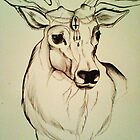 stag by Beth Whitcombe