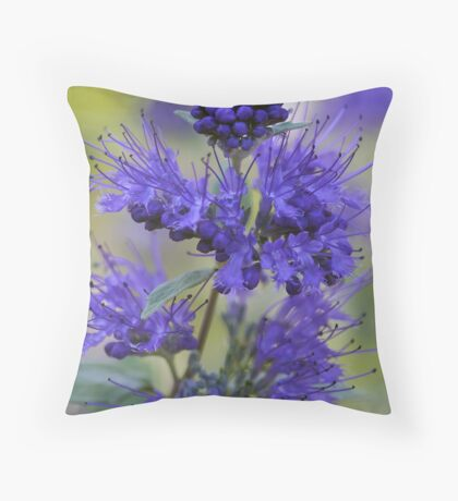 Dark Knight (Bluebeard) - Verbena Throw Pillow