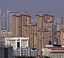 View from Tianning Si, Changzhou, Jiangsu by DaveLambert