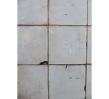 Old ceramic tile in usesd look  Photographic Print