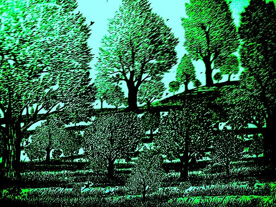 GREEN ACRES by KEITH  R. WILLIAMS