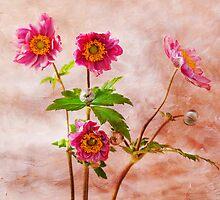 Anemones by inkedsandra