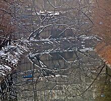 Winter Reflections, Canal, Nanjing, Jiangsu by DaveLambert