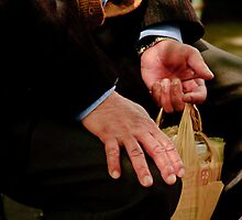 HANDS by Diane Peresie