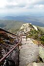 Walking Down the Mountain - Whiteface, Lake Placid New York by Debbie Pinard