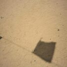 Images via Shadows.... by True Cinema Movement