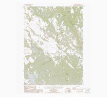 USGS Topo Map Oregon Brady Butte 279115 1988 24000 Kids Tee