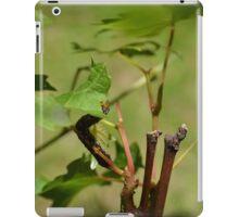 Caterpillar iPad Case/Skin
