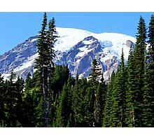 Mount Rainier from Paradise Photographic Print