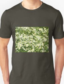 Green field with white daisies closeup T-Shirt