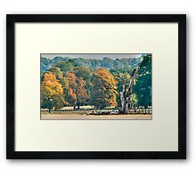 Deadly Beautiful Framed Print