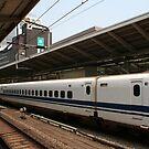 Tokyo Railway Station by Bruno Beach