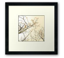 forest tapestry Framed Print