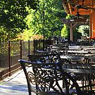 Lambertville Station by reindeer