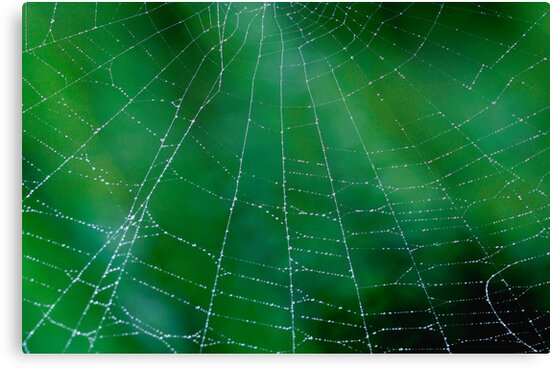 Matrix On Green by Gene Walls