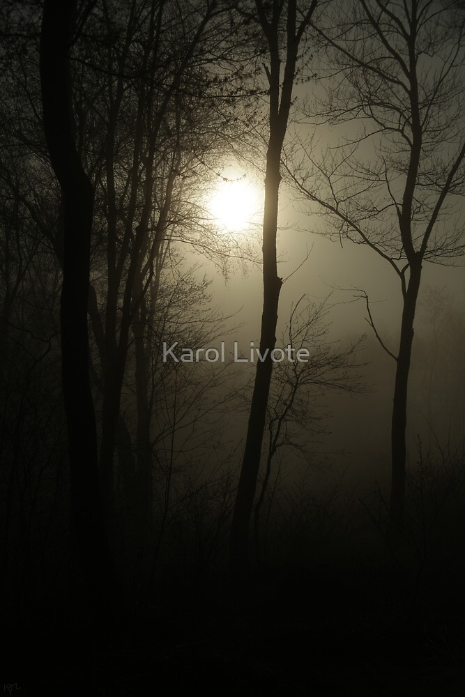 Out of Darkness Comes Light by Karol Livote