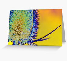 Psychedelic Teasel Greeting Card