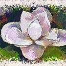 Painted Magnolia Blossum by Bootiewootsy