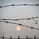 Through the Wire by elasita