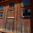 Old Doors by jrier