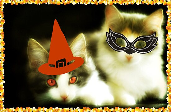 Have a Purrrfect Safe Halloween!!! © by Dawn M. Becker