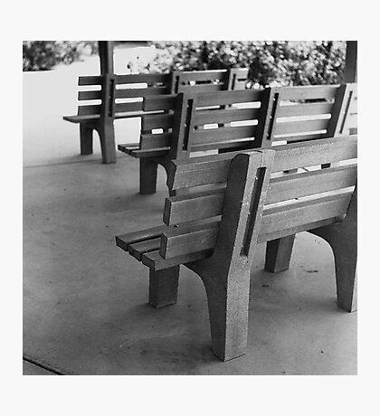 Benches Photographic Print