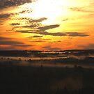 Golden Morning Sunrise by Don Rankin