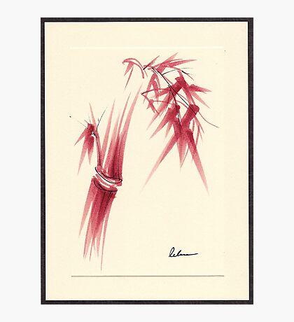 """Delicate"" - Original Huntington Gardens Plein Air Drawing Photographic Print"