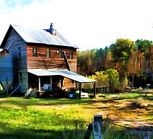 Price's Mill - Upstate South Carolina by Randall Faulkner