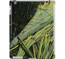 Reed Raft in a Lake in Ibarra iPad Case/Skin