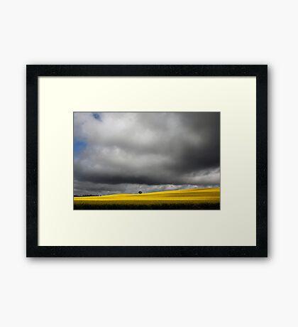 Storm Clouds over Canola Fields SA Framed Print
