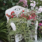 Andrea&#x27;s Garden Chair by Sandra Foster