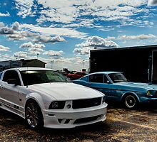 Saleen Mustang and 1968 Mustang by Paul Danger Kile