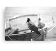 Cheeky Bird Canvas Print