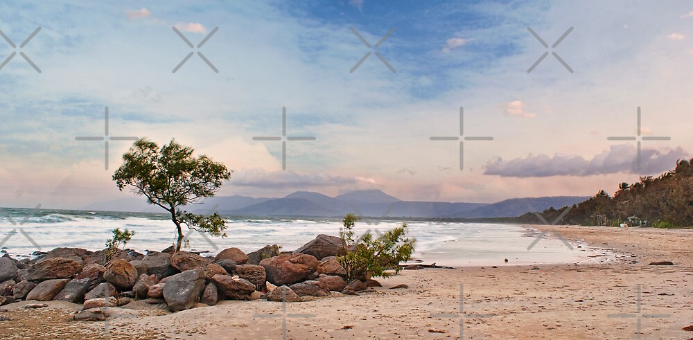 Windy 4mile Beach by Ewan Arnolda