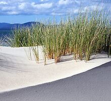 Sand dune formation - Marion Bay Tasmania by Nigel Butfield