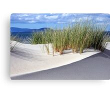 Sand dune formation - Marion Bay Tasmania Canvas Print