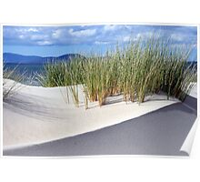 Sand dune formation - Marion Bay Tasmania Poster
