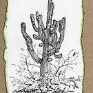 A Giant Saguaro Cactus of Southern Arizona * by James Lewis Hamilton