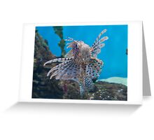 Fish in a Tank Greeting Card